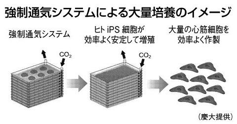 ips細胞大量培養のイメージ 慶応大学